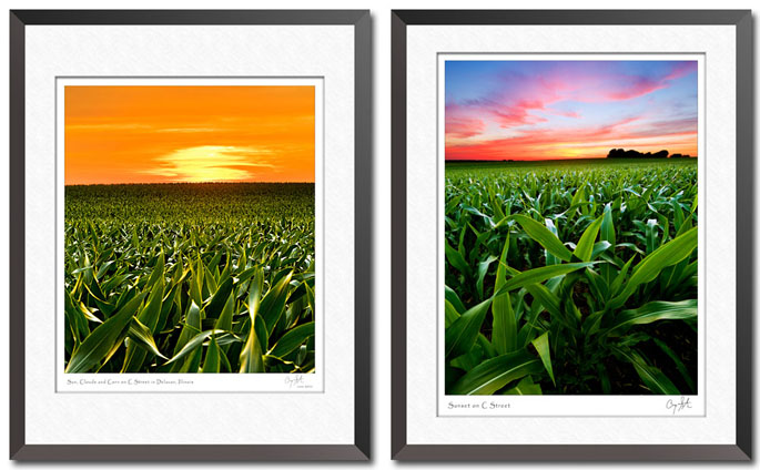 Two views of a corn field