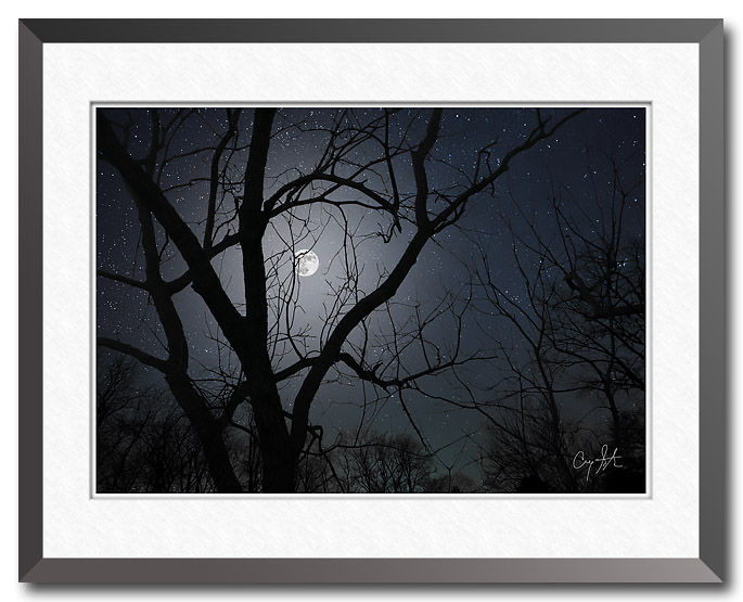 Fine art photo showing a full moon through bare trees set against a star filled night sky
